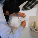 drawing-lab-DSCN1802