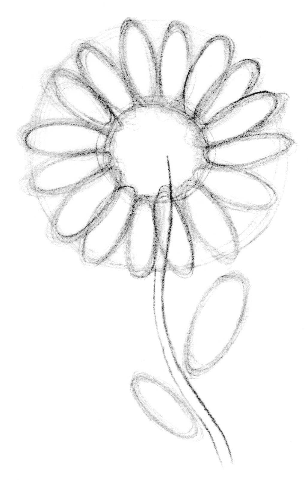drawing lesson flower the scribbles institute