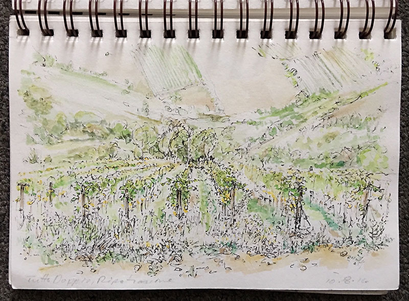 Tutto Doppio grape vines standing at attention, waiting to be harvested; In doing this sketch I faced the challenges of depicting the steep angle of this hill; then using atmosspheric perspective to show depth of scale for farms on distant slopes.