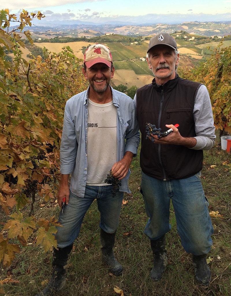 Rekindling my friendship with Bob Nease was a highlight of the trip. His passion for wine is inspiring. Caring for, and picking grapes (and olives) is strenuous, yet gratifying work. For a couple of enjoyable weeks I was sketch hunter turned farmer.