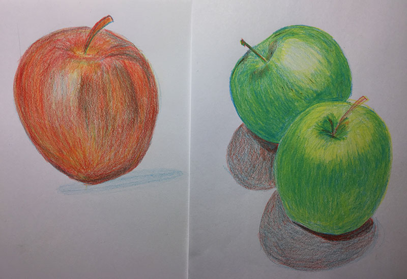 Meanwhile, Devin's mom, Becky, was deeply engaged in layering primary colors with Prismacolor pencils to achieve beautifully formed apples.